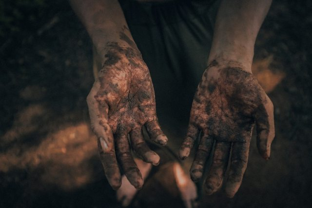 A photograph of two hands covered with mud open to the camera